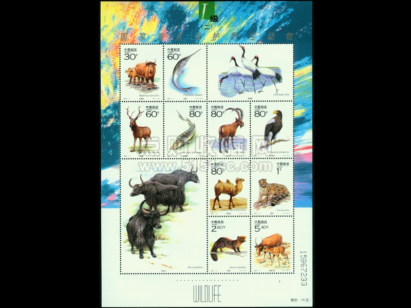 国家重点保护野生动物(Ⅰ级)(二)