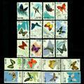 特56 蝴蝶