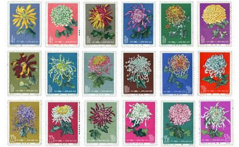特44菊花,特44菊花邮票,特44菊花邮票值多少钱,1960年菊花邮票,菊花邮票价格,特44邮票