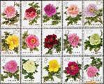 《牡丹》特种邮票详细介绍