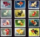 解读金鱼邮票及其防伪