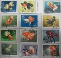 特38金鱼邮票背胶知识