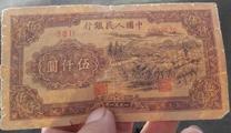 1951年5000年羊群纸币真伪鉴别