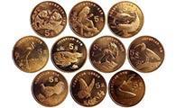 我國已發行10覆蓋珍稀野生動物紀念幣